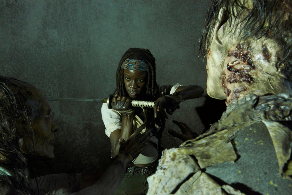 New-Character-Promo-Michonne-the-walking-dead-37684739-999-667.jpg